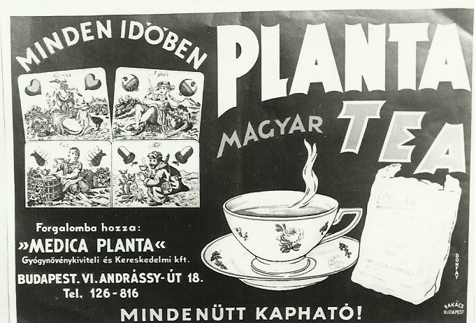 Papa and the planta tea